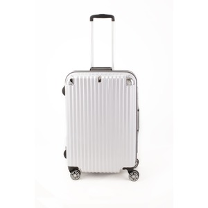 スーツケース/キャリーバッグ 【ホワイトヘアライン】 Mサイズ 75L 『トラベリスト ストロークII』
