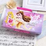 筆箱 オーロラ姫