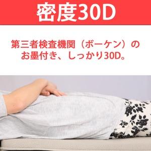 高反発マットレス 【ダブル 厚さ10cm ミッドブルー】 高耐久性 310 『エイプマンパッド』 〔ベッドルーム 寝室〕