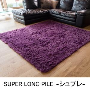 ロングパイル ラグマット/絨毯 【パープル 約2畳 約185cm×185cm】 洗える ホットカーペット 床暖房対応 『シュプレ』