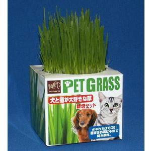 犬と猫が好きな草 栽培セット - 拡大画像