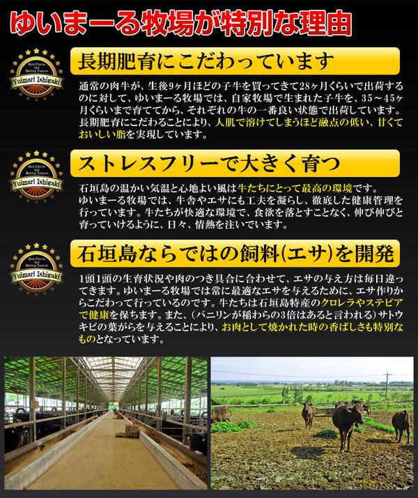 最高級 石垣牛ステーキ 250g×2枚 A5・4クラス 箱入り 【石垣島直送】