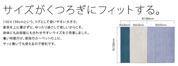 NEXTHOME マイナス5〜8℃冷たいICEMA×(アイスマックス)ラグ コールドトーン