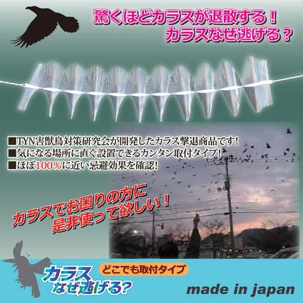 カラスよけ/カラス対策 「カラスなぜ逃げる」 どこでも取付けタイプ 日本製