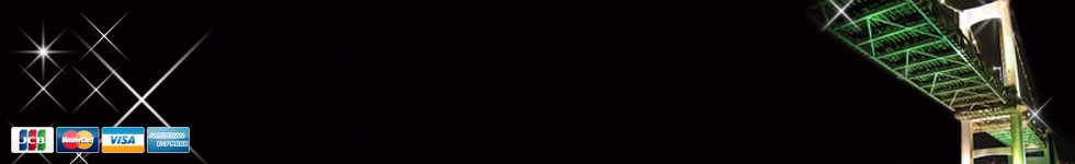 最新小型デジタル・ビデオカメラ|防犯カメラ【暗視・人感検知】専門ネットショップ