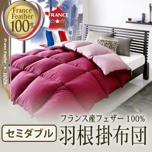 【単品】掛け布団 セミダブル ラピスネイビー フランス産フェザー100%羽根掛布団 - 拡大画像