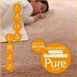 ラグマット【pure】ブラウン 200×250cm ふんわり、なめらか!マイクロファイバーラグ 【pure】ピュア