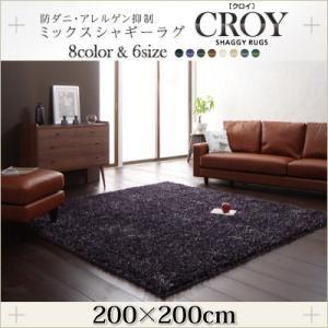 ラグマット 200×200cm【CROY】ブラック 防ダニ・アレルゲン抑制ミックスシャギーラグ【CROY】クロイ - 拡大画像