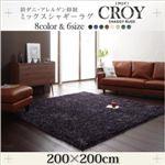 ラグマット 200×200cm【CROY】ブラック 防ダニ・アレルゲン抑制ミックスシャギーラグ【CROY】クロイ