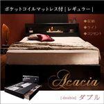 収納ベッド ダブル【Acacia】【ポケットコイルマットレス(レギュラー)付き】 カラー:ブラック マットレスカラー:ブラック モダンライト・コンセント付き収納ベッド【Acacia】アケーシア