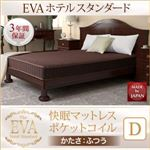 【EVA】ホテルスタンダード・ ダブル