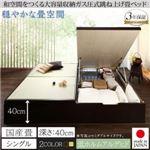 畳ベッド シングル 国産畳/深さラージ【フレームのみ】フレームカラー:ナチュラル くつろぎの和空間をつくる日本製大容量収納ガス圧式跳ね上げ畳ベッド 涼香 リョウカ