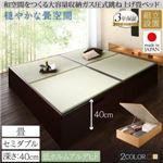 【組立設置費込】畳ベッド セミダブル 深さラージ【フレームのみ】フレームカラー:ダークブラウン くつろぎの和空間をつくる日本製大容量収納ガス圧式跳ね上げ畳ベッド 涼香 リョウカ