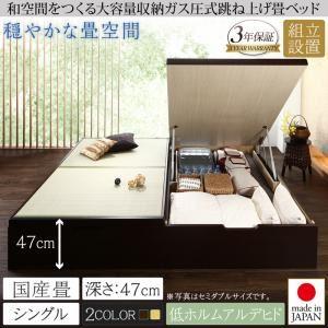 【組立設置費込】畳ベッド シングル 国産畳/深さグランド【フレームのみ】フレームカラー:ダークブラウン くつろぎの和空間をつくる日本製大容量収納ガス圧式跳ね上げ畳ベッド 涼香 リョウカ - 拡大画像