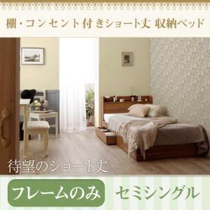 収納ベッド ショート丈 棚・コンセント付き収納ベッド Caterina カテリーナ
