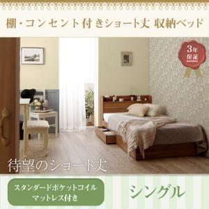 収納ベッド シングル 【スタンダードポケットコイルマットレス付】