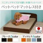 ベッド 【マットレス付】 フレームカラー:ブラウン 寝具カラー:ライトブルー ミニチュアサイズが可愛い木製ペットベッド Catnel キャトネル