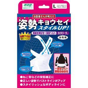 (お徳用 2セット) 山田式 姿勢キョウセイ カタラーク 女性用 L ×2セット - 拡大画像