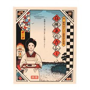(お徳用 12セット) 白樺派のカレー ポーク(中辛) 200g ×12セット - 拡大画像