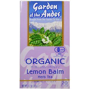 (まとめ買い)ガーデンオブアンデス ハーブティー レモンバーム 20袋×3セット - 拡大画像