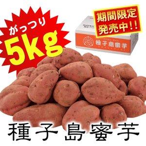 夢百笑 種子島蜜芋 5Kg 【安納芋(あんのういも)】 - 拡大画像