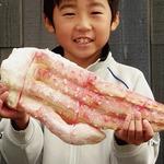 【特大】王様タラバガニ(ボイル 脚)/1kg前後