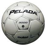 モルテン(Molten) サッカーボール5号球 ペレーダ3000 シャンパンシルバー F5P3000W