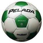 モルテン(Molten) サッカーボール5号球 ペレーダ3000 シャンパンシルバー×メタリックグリーン F5P3000WG