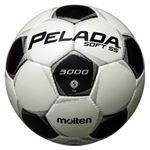モルテン(Molten) サッカーボール5号球 ペレーダ3005 シャンパンシルバー×メタリックブラック F5P3005