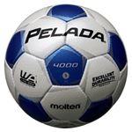 モルテン(Molten) サッカーボール5号球 ペレーダ4000 シャンパンシルバー×メタリックブルー F5P4000WB