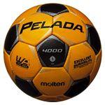 モルテン(Molten) サッカーボール5号球 ペレーダ4000 メタリックイエロー×メタリックブラック F5P4000YK