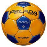 モルテン(Molten) サッカーボール5号球 ペレーダキーパートレーニング F5P9200