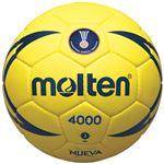 【モルテン Molten】 ハンドボール 【1号球】 人工皮革 ヌエバX4000 H1X4000 〔運動 スポーツ用品〕