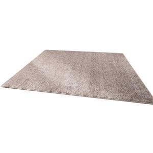 ファイテン(phiten) ラグマット(約190×約190cm) BE746000 - 拡大画像