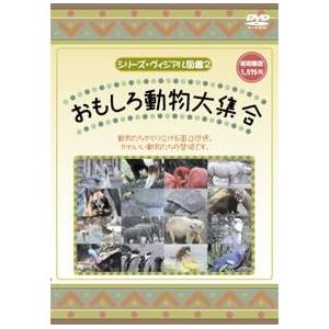 KIDSいろんな動物DVD4本セット+オマケ付! - 拡大画像