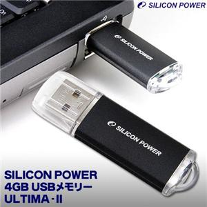SILICON POWER 4GB USBメモリー ULTIMA-II 32513-4GB00-01-JP - 拡大画像