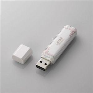 エレコム USBメモリ[LUIRE(ルイーレ)] MF-NWU2A04GPN1 - 拡大画像