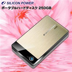 SiliconPower(シリコンパワー) ポータブルハードディスク 250GB SP250GBPHDA50S2G - 拡大画像