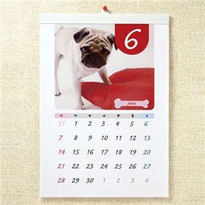 (まとめ)サンワサプライ インクジェット手作りカレンダーキット(壁掛・縦・A3) JP-CALSET35【×3セット】 - 拡大画像