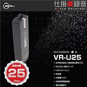 ベセトジャパン 仕掛け録音ボイスレコーダー VR-U25GR - 拡大画像