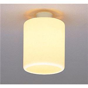 日立 小型シーリングライト 玄関(内)・廊下用 (LED電球別売) LLC6723E