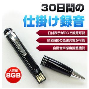 ベセトジャパン 仕掛録音30日ペン型ボイスレコーダー VR-P005N - 拡大画像