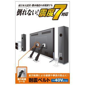 エレコム TV用耐震ベルト/〜40V用/強力粘着シールタイプ/2本入 TS-001N2 - 拡大画像