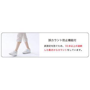 (まとめ) DRETEC ミニキシリウォーカー ホワイト H-234WT 【×5セット】