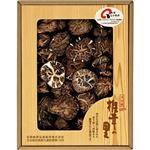 (まとめ)大分産椎茸どんこ B2112585 B3116100【×2セット】