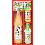 (まとめ)飛騨高山ファクトリー 自然の恵み 100%ジュース・ご当地スカッシュ C8250080【×2セット】