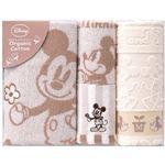 ディズニー ミッキー&ミニー ナチュラルガーデン タオルセット C7111565 C8082066
