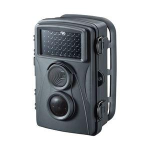 サンワサプライ セキュリティカメラ CMS-SC01GY - 拡大画像