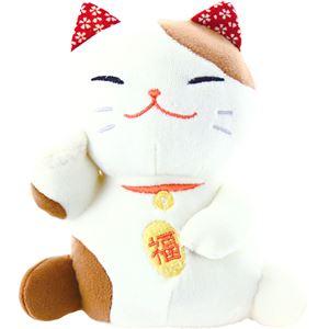 (まとめ)もちっとぐるみ 招き猫 C9079664【×2セット】 - 拡大画像