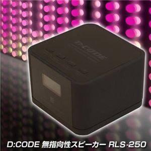 D:CODE 無指向性スピーカー RLS-250 ブラック - 拡大画像
